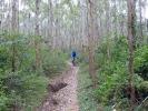 Hier gibt es tolle Waldwege zu befahren - ohne Radtaschen ein richtigerGenuss