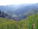 Reisterassen von Longsheng bei Guilin