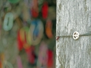 Die Armbänder werden als Zeichen der Trauer und Hoffnung auf Frieden an die Bäume des killing fields gehangen