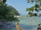 Nationalpark auf der Insel Penang