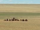 Ausläufer der Wüste Gobi