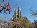 Die Sagrada Família ist eine römisch-katholische Basilika in Barcelona.